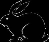 Rabbit Anti-IL-6 receptor [Clone rhPM-1 (Tocilizumab)]  Heavy Chain modification